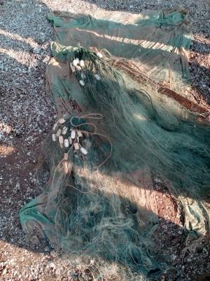 У Запорізькій області схопили нахабних браконьєрів