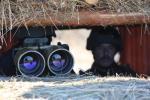 Щодо обстановки в зоні проведення АТО та на адміністративній межі з ТОТ АР Крим